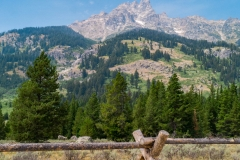 fence, trees and sky - Grand Teton National Park