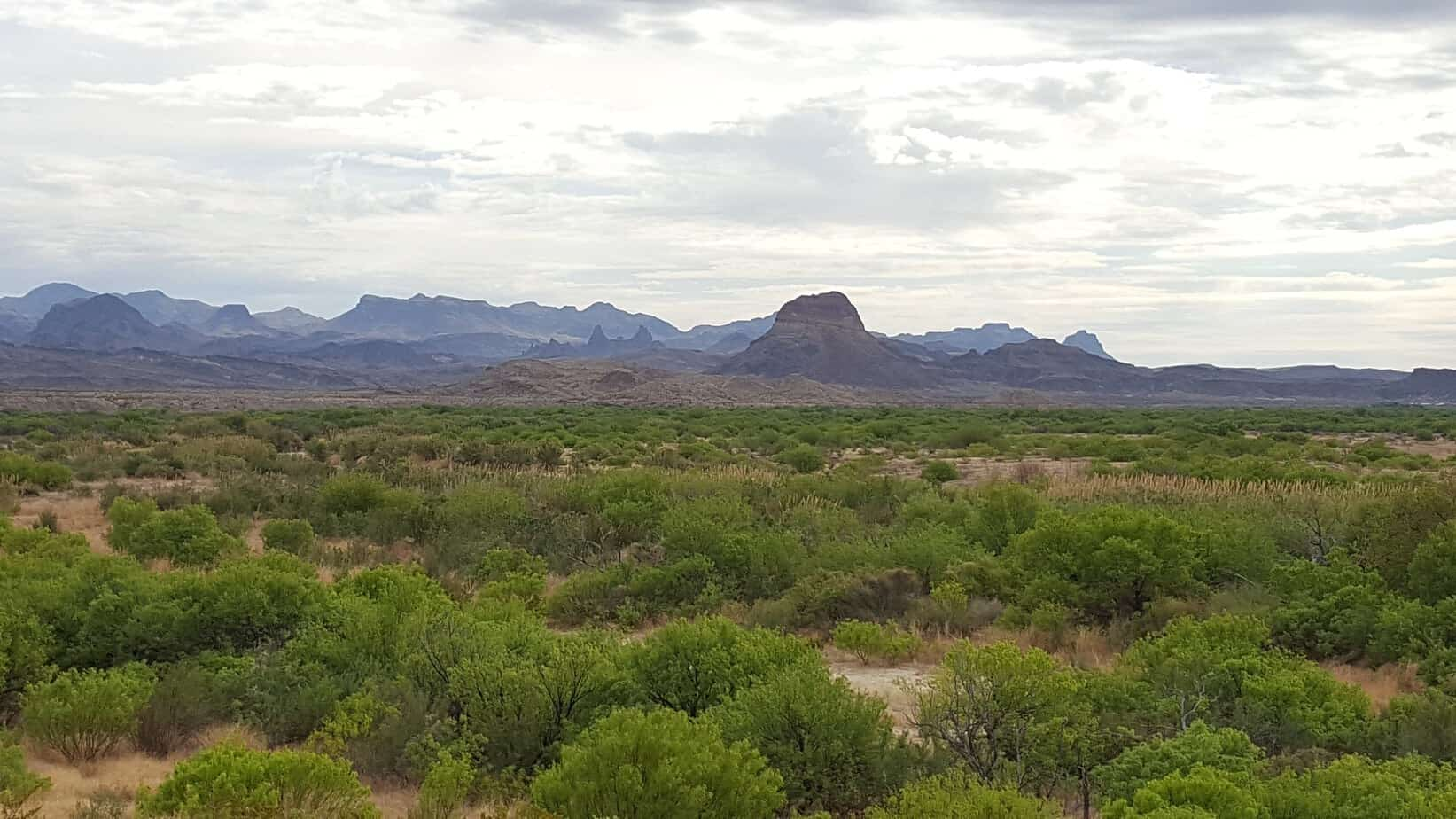 Favorite US National Parks - Big Bend National Park