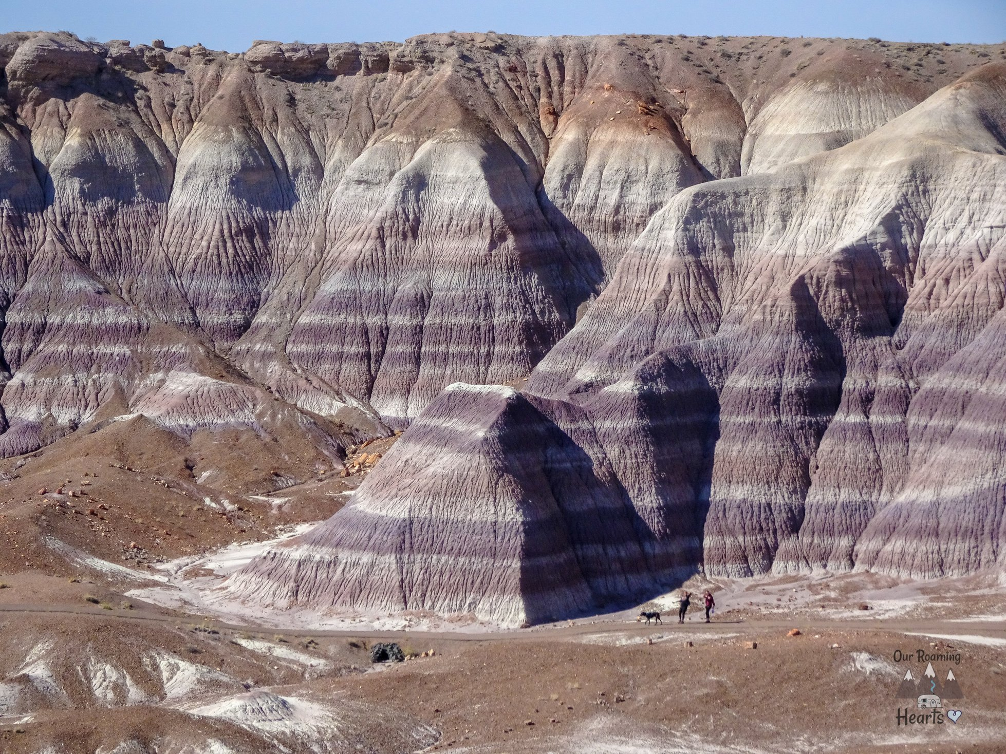 Favorite US National Parks - Petrified Forest National Park